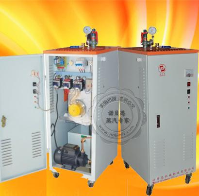 蒸汽发生器24KW